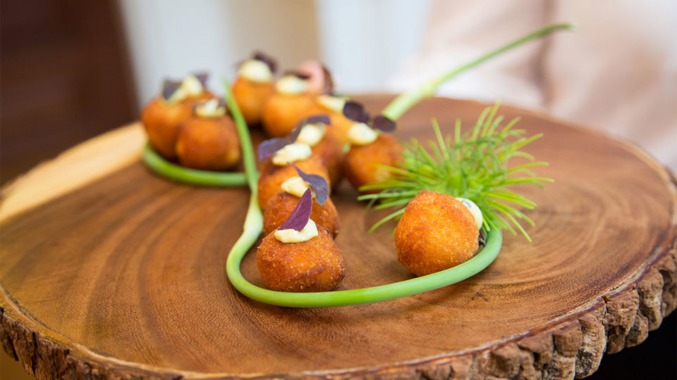 Forklift Catering - Boston Event - Allegro Photography - sustainable food passed appetizers