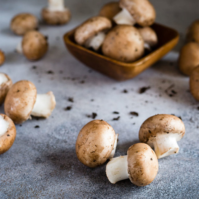 Forklift Catering - Boston Food Source - Wild Mushrooms - Ben Maleson